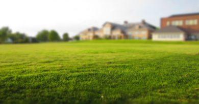 Češi hromadně investují do nemovitostí