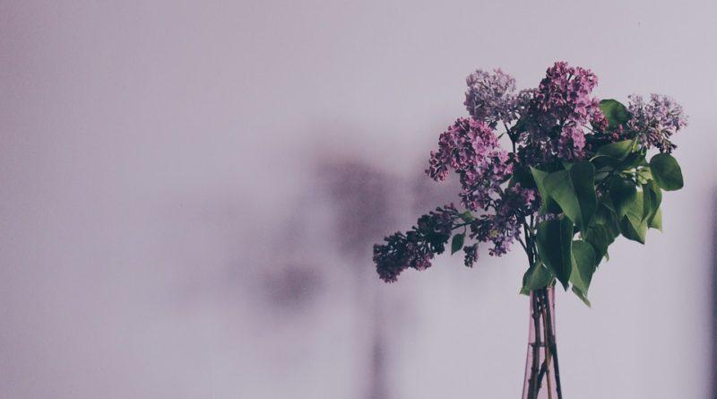 Karafiát proti stresu aneb další účinky květin