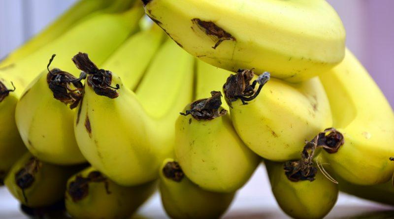 Proč bychom měli jíst banány?